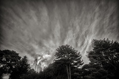 Temple_wide-Cloud streaks  WSW view-HDR-BW