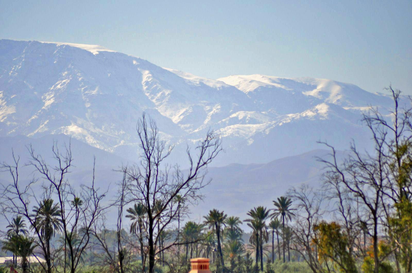 Maravillosas vistas de la cordillera del Atlas desde nuestro ámplio balcón en la habitación four seasons marrakech - 15907927555 552807ae92 h - Four Seasons Marrakech, oasis en la ciudad roja