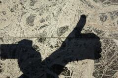 Shadow in series 365/2015
