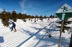SNĚHOVÉ ZPRAVODAJSTVÍ: Sníh pomalu odtává