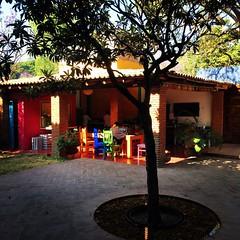 Buenos Días La Betulia #bedandbreakfastoaxaca #goodmorningoaxaca #discoveroaxaca #oaxacatoday #mexiconow www.labetulia.com