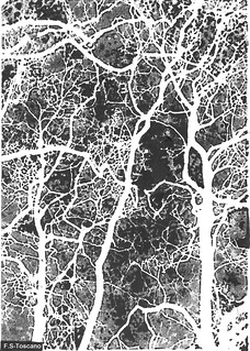 Bosque neuronal con espíritus. Neuronal forest with ghost.