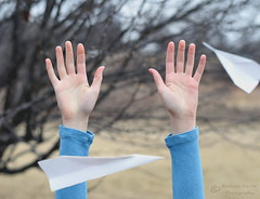 Two Paper Airplanes