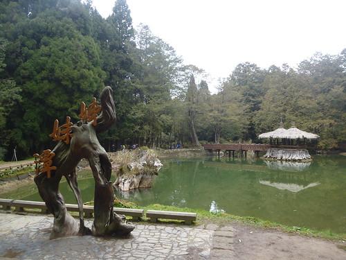 Ta-Alishan-Parc-Marche (45)