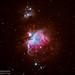 Orion Nebula (M42) - Take Two by Adam Woodworth