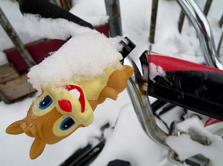 Snowy Smiley Cycling Squirrel