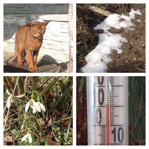 К нам в горы пришла весна, ночью весенний дождь смыл весь снег! #старыйкрым