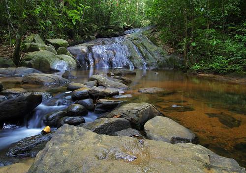 longexposure vacation fall forest river waterfall nationalpark pond stream long exposure december january deep reserve sri lanka srilanka ceylon sinharaja sinharajaforestreserve