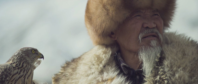 Hombre nómada con su halcón
