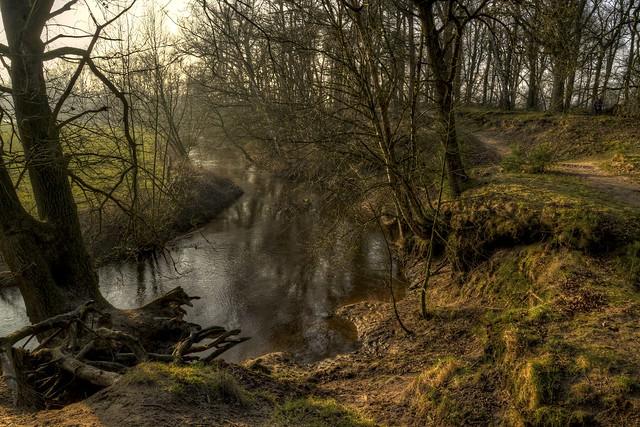небольшая река рядом с лесом