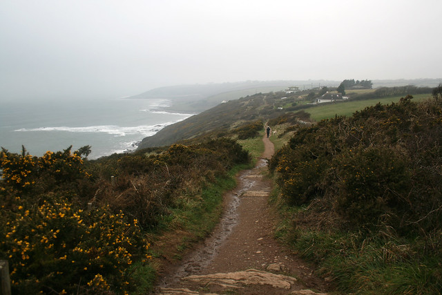 The coast path approaching Wembury