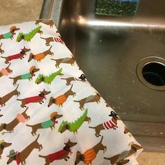 Deciding to use the pretty towels. #cynthiarowley, #wesofancy, #puppies
