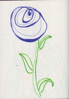 15 Rose