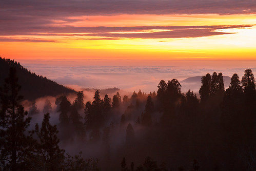 hume california unitedstates haze usa serene dusk trees sky outdoor exhibed skyline flowing clouds