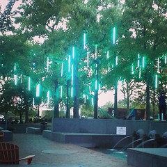This shot from the Spruce Street Park in September is a bit Christmasey to me.