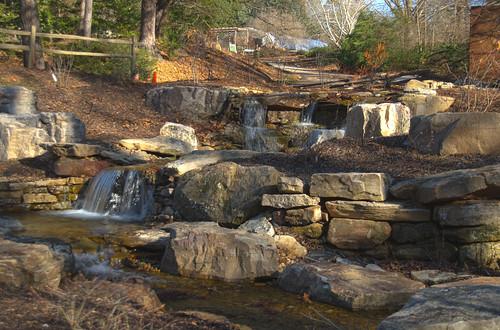 South Carolina Botanical Garden-021