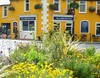Westport: town square planting by green voyage
