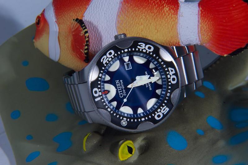 Studio sub : aimez vous les montres bleues? 15922686903_88bd790cca_c