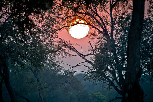 africa sunrise zimbabwe manapools