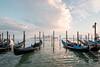 A LAst Sample of Venice