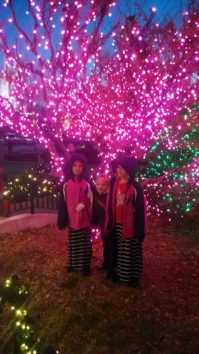 Dec 21 2014 DC Visitors' Center (9)