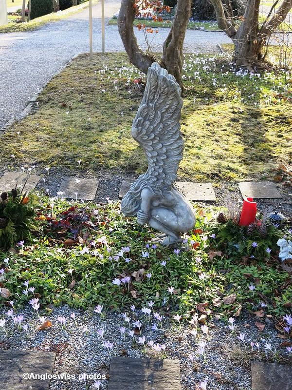 St. Kathrinen Cemetery, Solothurn