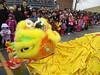 Atlanta Chinese New Year 2015