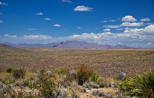 Looking Across a Desert to the Christmas Mountains (Big Bend National Park)