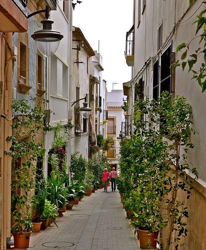 valencia spain europa europe architectural espana historical avenue oldtown javea treelined xabia alicanteprovince