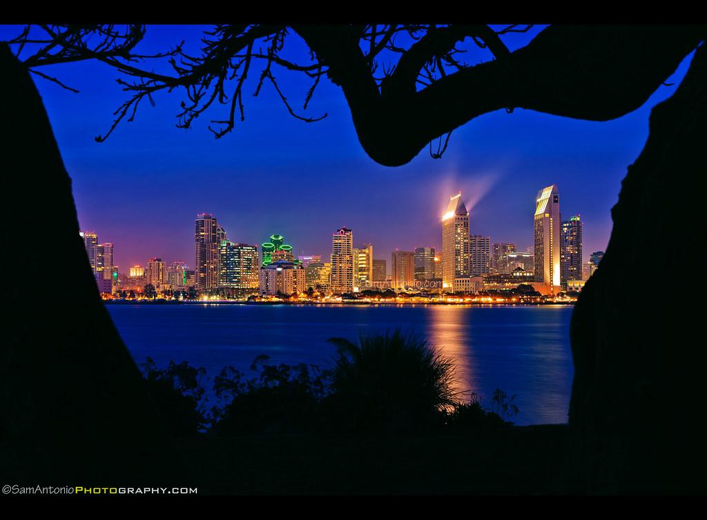 Ocean California Park City Travel Blue Trees Sea Summer Vacation Urban Panorama Usa Holiday Reflection Building