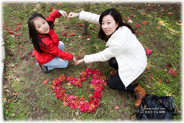 0202陽明山花卉017