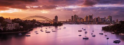city longexposure bridge sunset urban night sunrise opera harbour sydney australia nsw 2015 waverton