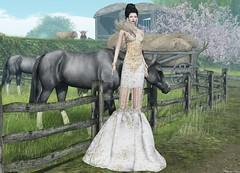 VoguE - Shyla Gown