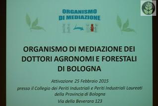 Organismo di mediazione