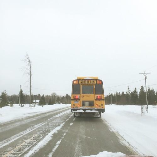 bus schoolbus schoolsout