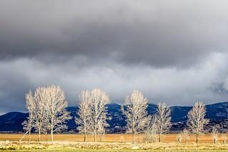 Rayos de sol en los campos entorno a la Laguna de Gallocanta - Teruel
