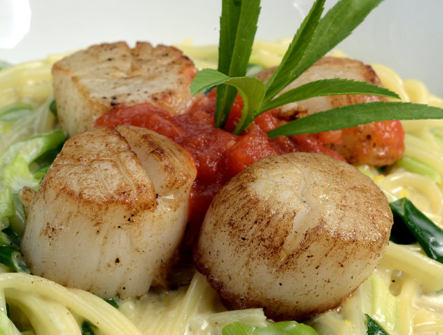 Deep Sea Scallops on Spaghetti copy