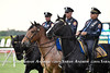 Police horses at Belmont Park