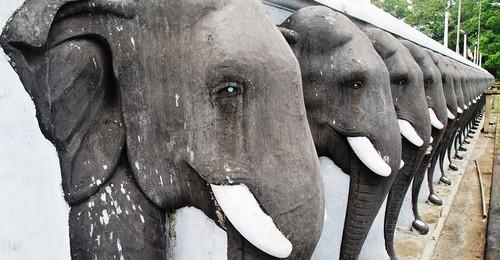 130 Anuradhapura (11)