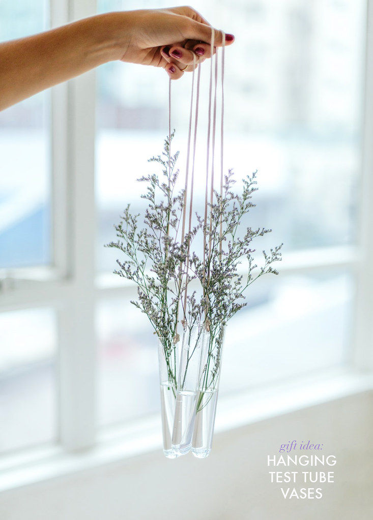 Gift Idea Hanging Test Tube Vases A Pair A Spare
