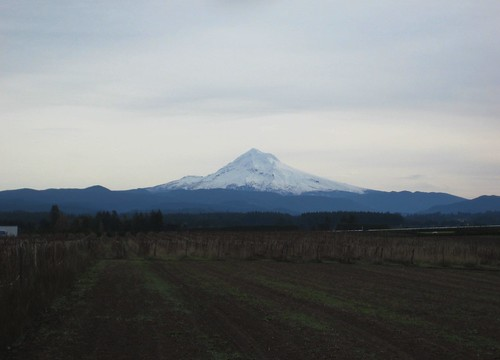 Mount Hood from Amisigger Road