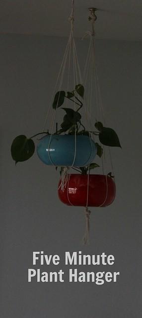 project plant hanger
