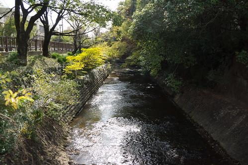 japan urlaub herbst aichi inuyama japanurlaub2014