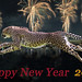Happy New Year 2015 by Connie Lemperle