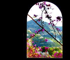 Through the window #dailyshoot #Altea #Spain