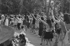 Waikiki - Hula class