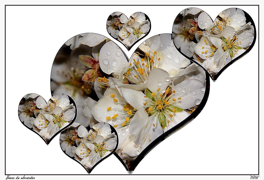 S. Valentín