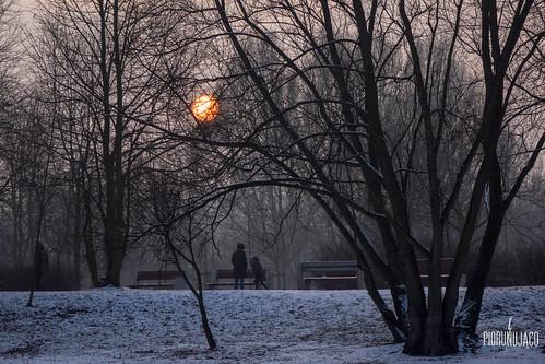 winter sunset snow fog poland zima śnieg słońce poznań zachód słońca zamglenie