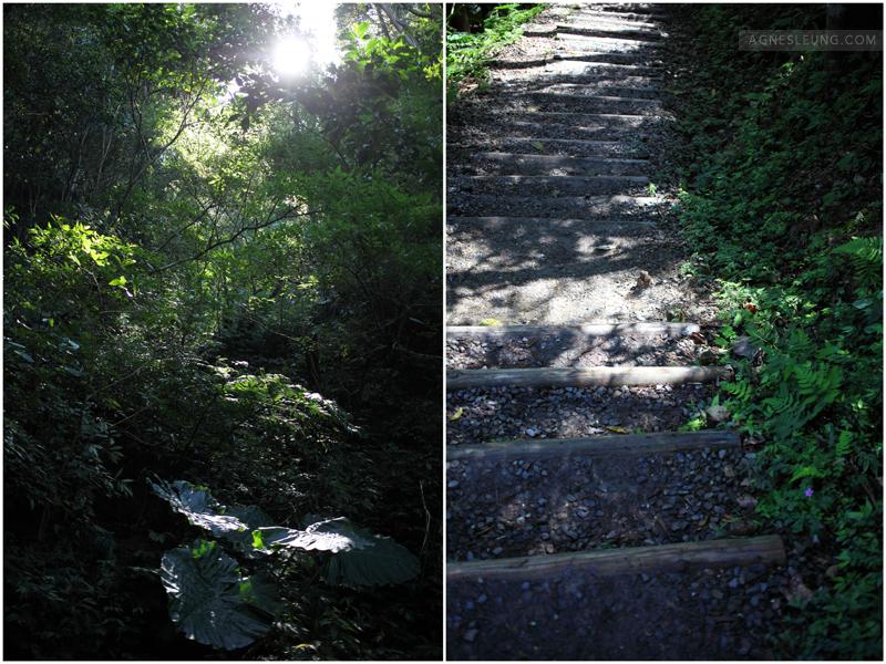 lin-mei-trek39