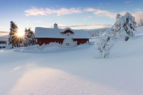 winter snow norway norge lillehammer norwegian noorwegen sjusjøen 2015 sjusjoen opplandfylke hedmarkfylke